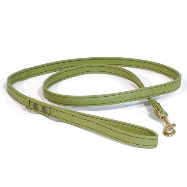 Hundeleine aus Leder (hellgrün)