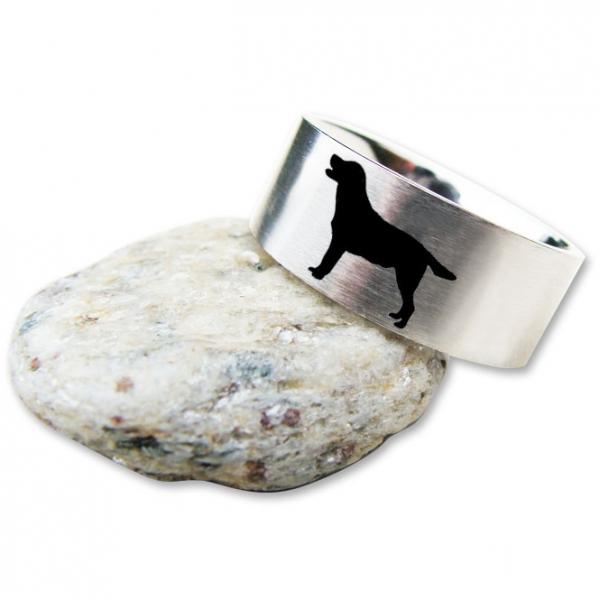 Ring Labrador